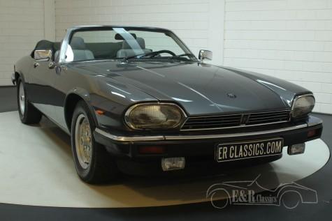 Jaguar XJS Kabriolett V12 1988  kaufen