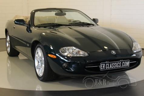 Jaguar XK8 cabriolet 2000  kaufen