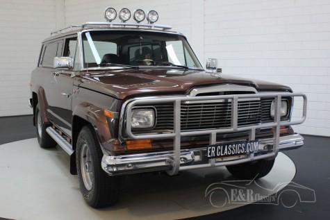 Jeep Cherokee Chief 5.9L V8 1980  kaufen