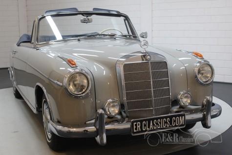 Mercedes-Benz 220 SE Convertible Ponton 1960 kaufen