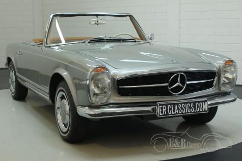 Mercedes-Benz 230SL Kabriolett 1964  kaufen