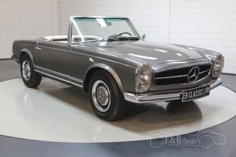 Mercedes-Benz 230 SL kaufen
