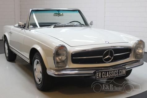 Mercedes-Benz 250SL 1967 kaufen