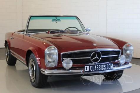 Mercedes-Benz 250 SL Pagode 1967  kaufen