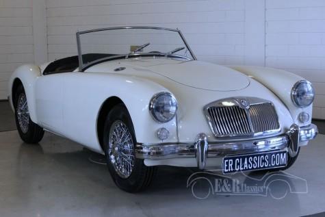 MGA 1500 Roadster 1955  kaufen