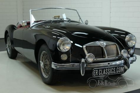 MGA 1600 Kabriolett 1960 kaufen
