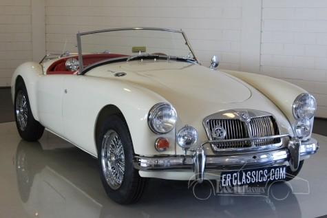 MG MGA Roadster 1962 kaufen
