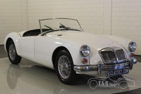 MGA 1961 Kabriolett  kaufen