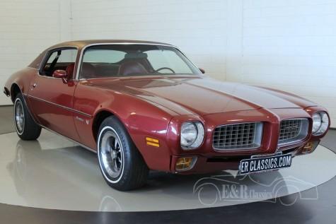 Pontiac Firebird Esprit Coupe V8 1973 kaufen