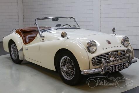 Triumph TR3A kaufen