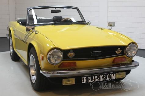 Triumph TR6 1973  kaufen