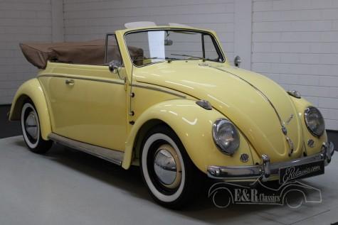 Volkswagen 1200 cabriolet 1963 kaufen
