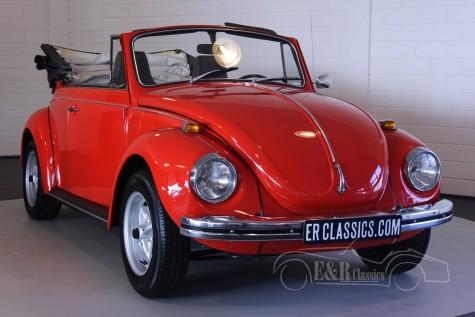 Volkswagen Kaefer 1302 LS  kaufen