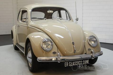 Volkswagen Beetle 1200 Dickholmer 1959 kaufen