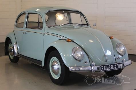 Volkswagen Beetle 1965  kaufen