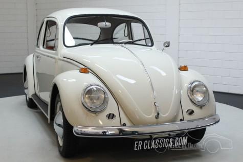 Volkswagen Käfer 1200 1965  kaufen