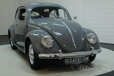 Volkswagen Käfer 1953  kaufen