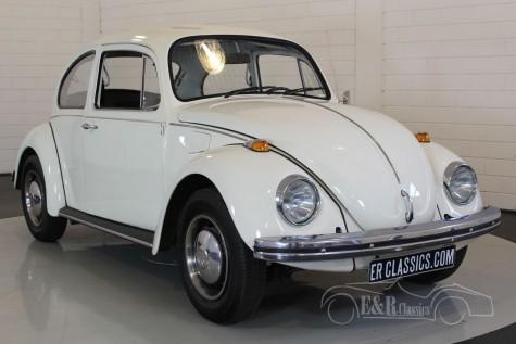 Volkswagen Kaefer 1973 kaufen