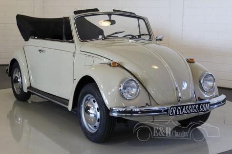Volkswagen Beetle 1500 Cabriolet  kaufen