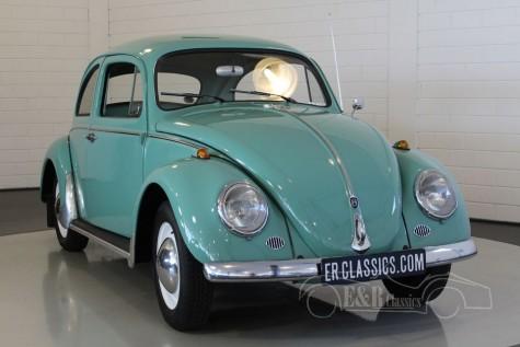 Volkswagen Beetle Coupe 1961  kaufen