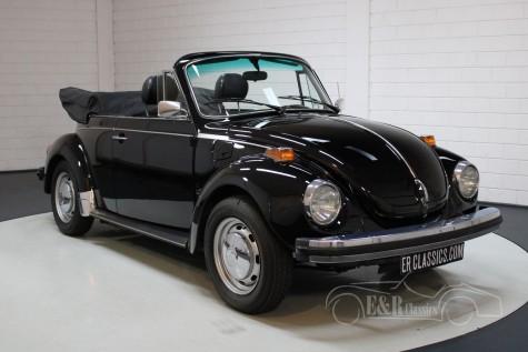 VW Käfer Cabrio  kaufen