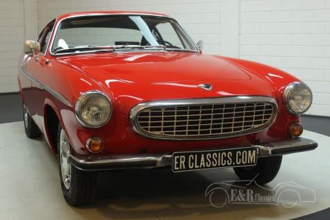 Volvo P1800S Coupe 1966  kaufen