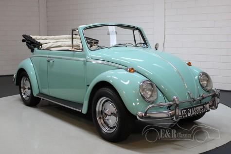 Volkswagen Beetle 1302 cabriolet 1965  kaufen